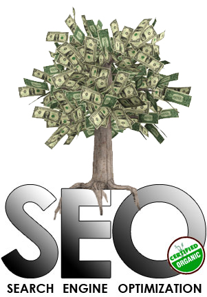 Organic SEO from TourRE